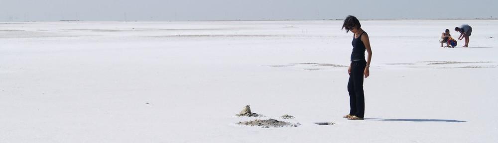 Salt Flats