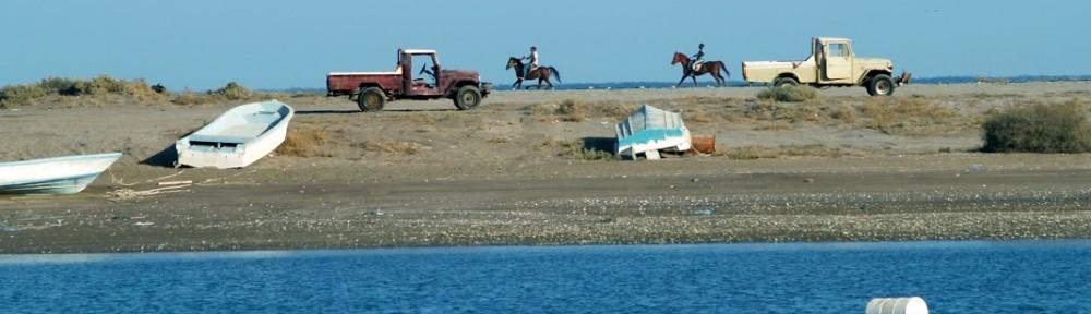 Khor Kalba Beach weekenduae
