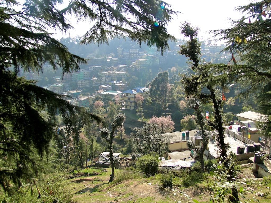Dharamsala 005