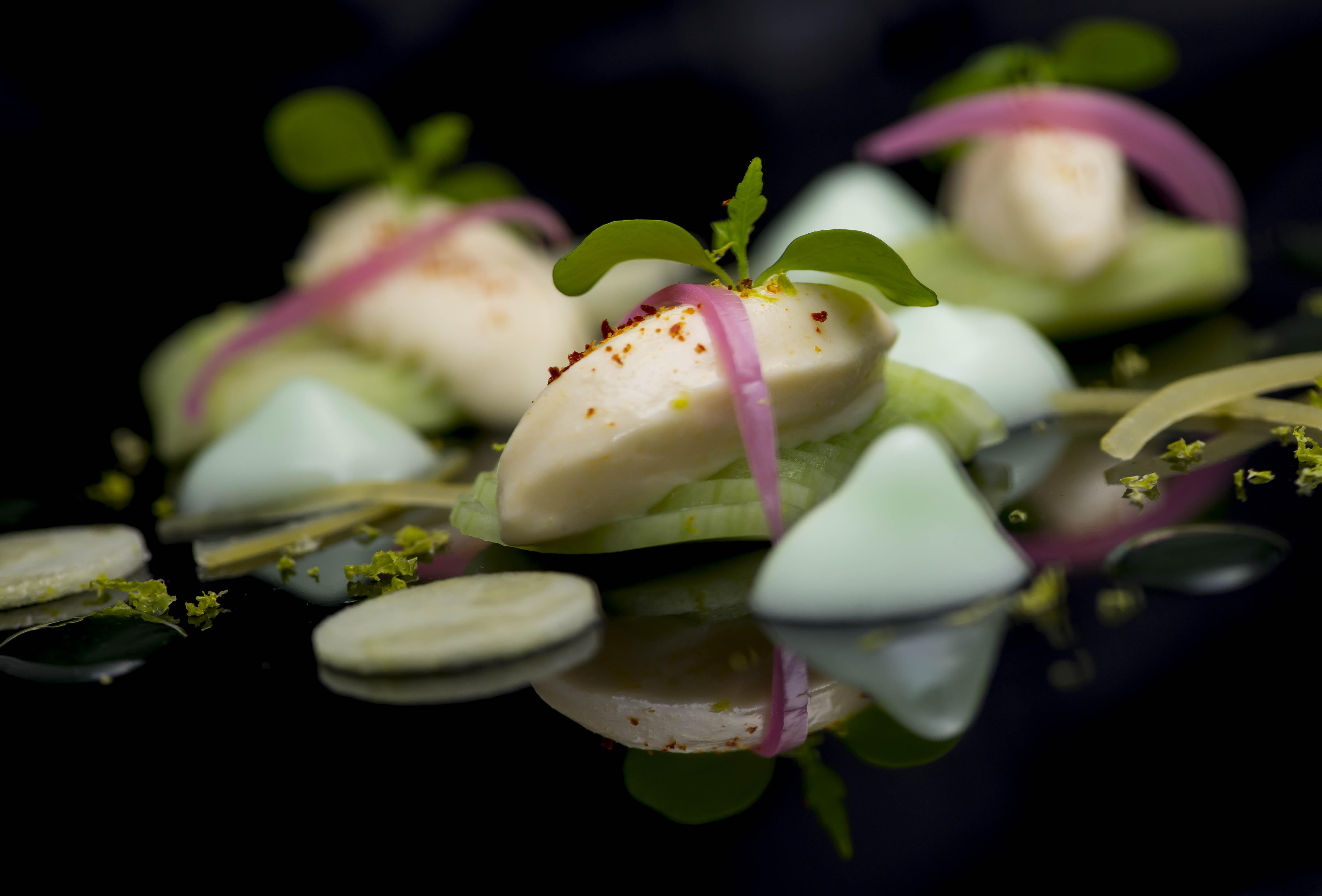 blanc-manger-de-haddock-concombres-citronneelles-espuma-granny-smith-3